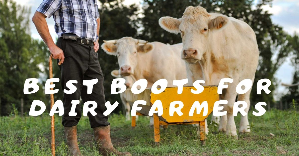 best-boots-for-dairy-farmers
