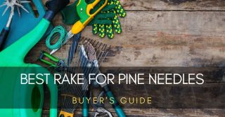 How to Pick the Best Rake for Pine Needles | F5active